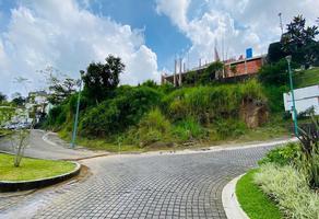 Foto de terreno habitacional en venta en  , residencial monte magno, xalapa, veracruz de ignacio de la llave, 0 No. 01