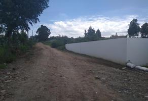 Foto de terreno comercial en venta en residencial san lorenzo 1, san lorenzo almecatla, cuautlancingo, puebla, 9789161 No. 01