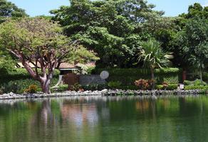 Foto de terreno habitacional en venta en  , residencial sumiya, jiutepec, morelos, 0 No. 01
