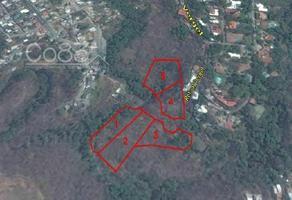Foto de terreno habitacional en venta en retorno al vergel fraccionamiento b norte , chipitlán, cuernavaca, morelos, 0 No. 01