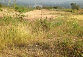 Foto de terreno habitacional en venta en ribera de cupía kilometro 55 , ribera las flechas, chiapa de corzo, chiapas, 14017280 No. 01