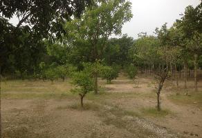 Foto de terreno habitacional en venta en  , ribera las flechas, chiapa de corzo, chiapas, 14067689 No. 01