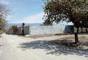 Foto de terreno habitacional en venta en  , ribera las flechas, chiapa de corzo, chiapas, 14067693 No. 01
