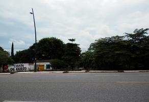 Foto de terreno habitacional en venta en  , ribera las flechas, chiapa de corzo, chiapas, 0 No. 01