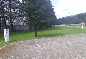 Foto de terreno habitacional en venta en rincón chico s/n l 19 , omitlán de juárez centro, omitlán de juárez, hidalgo, 10724906 No. 01
