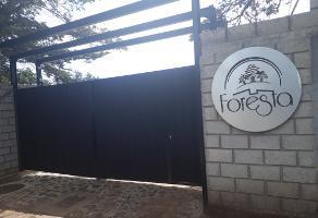 Foto de terreno habitacional en venta en rincón chico s/n l 28 , omitlán de juárez centro, omitlán de juárez, hidalgo, 10724863 No. 01