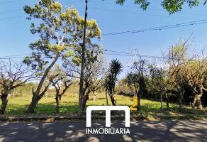 Foto de terreno habitacional en venta en  , rincón del bosque, córdoba, veracruz de ignacio de la llave, 6534704 No. 01