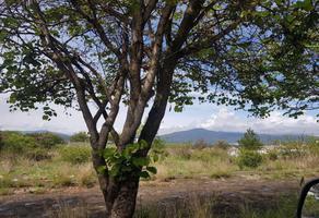 Foto de terreno habitacional en venta en rincon del pedregal 000, lomas del pedregal, morelia, michoacán de ocampo, 15704053 No. 01