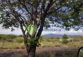 Foto de terreno habitacional en venta en  , rincón del pedregal, morelia, michoacán de ocampo, 15646215 No. 01
