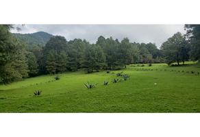 Foto de terreno habitacional en venta en  , rincón villa del valle, valle de bravo, méxico, 0 No. 01