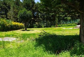 Foto de terreno habitacional en venta en rinconada san carlos , san carlos, metepec, méxico, 16819378 No. 01