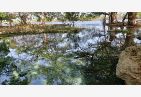 Foto de terreno habitacional en venta en rio 1, gonzalo guerrero, othón p. blanco, quintana roo, 0 No. 01