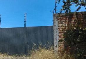 Foto de terreno habitacional en venta en  , rio blanco, zapopan, jalisco, 0 No. 02