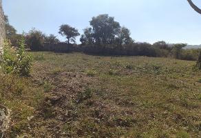 Foto de terreno habitacional en venta en rio bravo 17 , ixtlahuacan de los membrillos, ixtlahuacán de los membrillos, jalisco, 14817912 No. 02