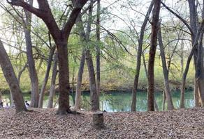Foto de terreno habitacional en venta en  , rio ramos, allende, nuevo león, 15957321 No. 01
