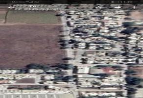 Foto de terreno comercial en renta en rio suchiate , infonavit nicolás bravo, el mante, tamaulipas, 0 No. 01