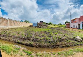 Foto de terreno habitacional en venta en roble s/n , san andres huayapam, san andrés huayápam, oaxaca, 0 No. 01