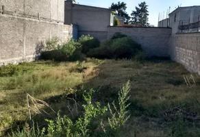 Foto de terreno habitacional en venta en rodolfo bustamante , papalotla, papalotla, méxico, 0 No. 01