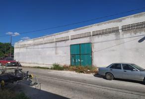 Foto de terreno comercial en venta en  , roma, mérida, yucatán, 15299424 No. 01