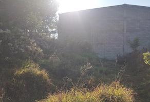 Foto de terreno habitacional en venta en roma s/n , la virgen, pátzcuaro, michoacán de ocampo, 6438560 No. 01