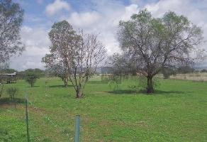 Foto de terreno habitacional en venta en roman loera , chicahuales i, jes��s mar��a, aguascalientes, 10708910 No. 01