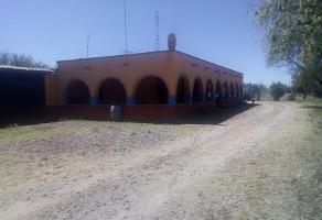 Foto de rancho en venta en rosa 1, bona gens, aguascalientes, aguascalientes, 16148428 No. 01