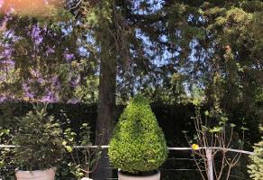 Foto de casa en condominio en venta en rosaleda 63, lomas altas, miguel hidalgo, df / cdmx, 0 No. 01
