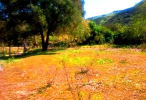 Foto de rancho en venta en rosarito , rosarito este, playas de rosarito, baja california, 14882112 No. 01