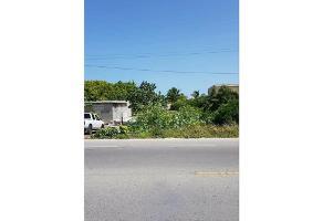 Foto de terreno habitacional en venta en  , royal del norte, mérida, yucatán, 0 No. 01