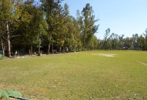 Foto de terreno comercial en venta en ruben casillas 200, el cerrito, san pedro tlaquepaque, jalisco, 12606250 No. 01