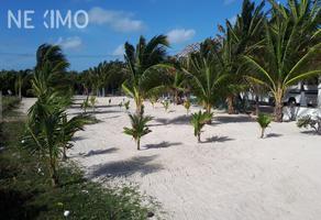 Foto de terreno habitacional en venta en rubia , mahahual, othón p. blanco, quintana roo, 0 No. 01