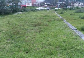 Foto de terreno habitacional en venta en ruiz cortinez 212, tecaxic, toluca, méxico, 0 No. 01