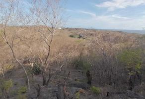 Foto de terreno habitacional en venta en rumbo al carnero s/n , puerto angel, san pedro pochutla, oaxaca, 0 No. 01