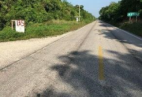 Foto de terreno industrial en venta en ruta de cenotes 117, puerto morelos, benito juárez, quintana roo, 7102632 No. 01