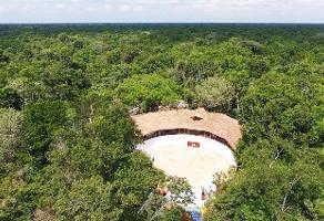 Foto de terreno industrial en venta en ruta de los cenotes 124, puerto morelos, benito juárez, quintana roo, 7565634 No. 01