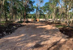 Foto de terreno habitacional en venta en ruta de los cenotes , leona vicario, felipe carrillo puerto, quintana roo, 0 No. 01