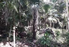 Foto de terreno comercial en venta en ruta de los cenotes , puerto morelos, benito juárez, quintana roo, 6284348 No. 01