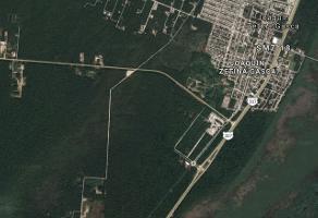 Foto de terreno industrial en venta en ruta de los cenotes , puerto morelos, benito juárez, quintana roo, 7080707 No. 01