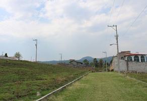 Foto de terreno habitacional en venta en s n, los cerritos, atlatlahucan, morelos, 0 No. 01