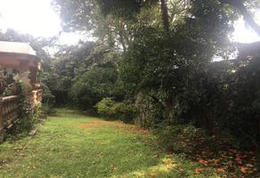Foto de terreno habitacional en venta en s s, delicias, cuernavaca, morelos, 0 No. 01