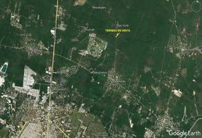 Foto de terreno comercial en venta en  , sac-nicte, mérida, yucatán, 14304562 No. 01
