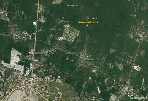 Foto de terreno comercial en venta en  , sac-nicte, mérida, yucatán, 14304566 No. 01
