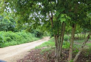 Foto de terreno habitacional en venta en salchi s/n , san pedro pochutla centro, san pedro pochutla, oaxaca, 0 No. 01