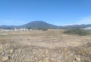 Foto de terreno comercial en venta en  , salina del marques, salina cruz, oaxaca, 0 No. 01
