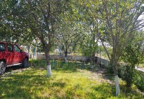 Foto de rancho en venta en  , salinas victoria, salinas victoria, nuevo león, 16161216 No. 01