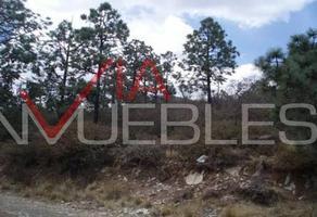 Foto de terreno habitacional en venta en  , saltillo zona centro, saltillo, coahuila de zaragoza, 13979669 No. 01