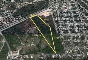 Foto de terreno habitacional en venta en  , salvador alvarado sur ii, mérida, yucatán, 13971487 No. 01