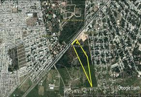 Foto de terreno habitacional en venta en  , salvador alvarado sur ii, mérida, yucatán, 0 No. 01