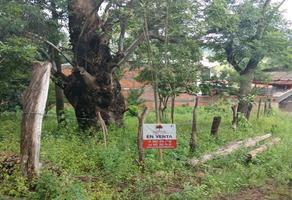 Foto de terreno habitacional en venta en - , salvador iriarte montes, morelia, michoacán de ocampo, 14184648 No. 01