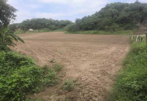 Foto de terreno habitacional en venta en samaritán s/n , chacahua, santa maría tonameca, oaxaca, 0 No. 01